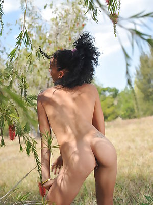 Vanessa L delightfully poses in the outdoors baring her lean, petite body and small tits.
