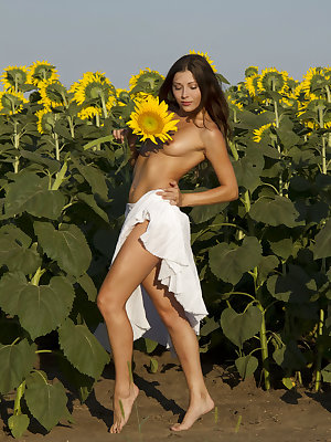Rimma A long and slender physique and enthusiastic posing stands out among the bright-colored sunflowers.