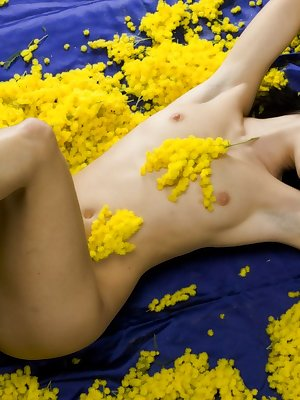 Become mesmerized with Nicollet as she basks in the lush beauty of yellow against her golden skin and teases you with her oh-so-yummy pink pussy.