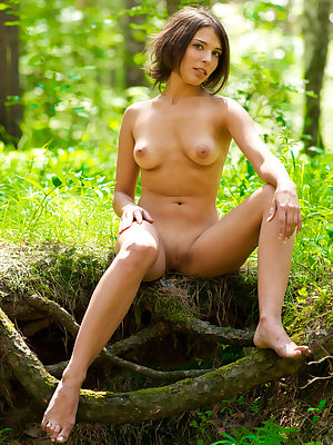 Appealing brunette strips her short dress in the woods to show off in all her nude glory.
