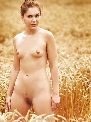 Teen solo girl Jenya A takes off her clothes to pose naked in a field of wheat
